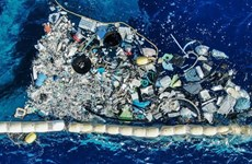 Int'l centre on marine plastic debris to be set up in Vietnam