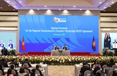 Prompt action needed to seize opportunities, navigate challenges under RCEP