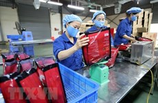 Vietnam maintains stable exports to Israel in 2020