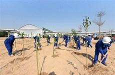 Environment ministry builds digital tree map in Vietnam