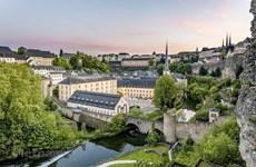 Vietnam, Luxembourg look for stronger development cooperation