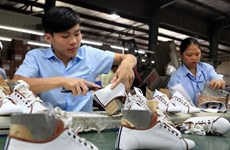 Vietnam works to adapt national legislation to int'l labour standards