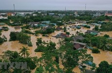 Int'l climatologists study severe storms, floods in Vietnam