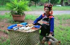 Unique rainy season festival of Ha Nhi ethnic people