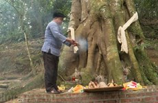 Forest worship ceremony - special cultural heritage of Mong people
