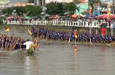 Tra Vinh province hosts traditional Ngo boat race