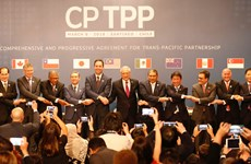 CPTPP comes into effect in Vietnam
