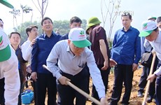 Party, State leader launches Tet tree planting festival