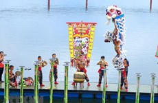 Da Nang hosts Int'l Lion Dance Festival
