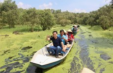 An Giang province welcomes 8.5 million tourists