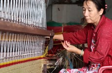 Tien Giang moves to preserve sedge mat weaving craft
