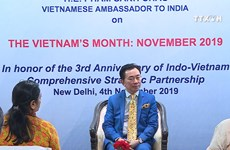 Vietnam Month to be held in India