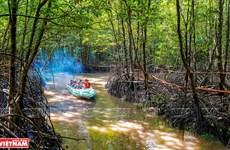 Ca Mau Cape – breath-taking destination