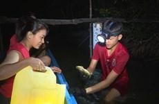 Awakening Ca Mau eco-tourism potential