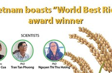 "Vietnam boasts ""World Best Rice"" award winner"
