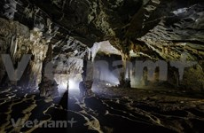 Tien cave in Quang Binh province