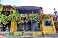 Peaceful Hoi An amid Covid-19 pandemic