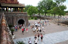 Vietnam's tourism strives to bounce back