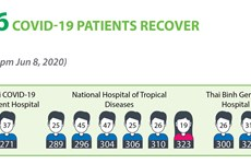 Nine more Covid-19 patients recover, total stands at 316