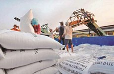 Door opens for Vietnamese rice exports to EU