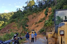 Landslides kill 16, leave 37 missing in Quang Nam province