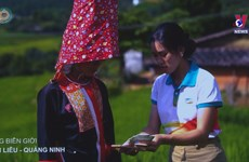Viettel named best mobile service provider in Vietnam