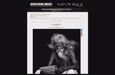 Vietnamese photographers win Int'l Photo Award
