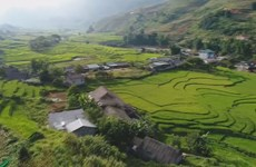 Lao Cai aims to welcome 5 mln visitors this year