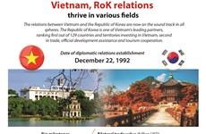 Vietnam, RoK relations  thrive in various fields