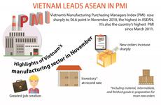 Vietnam leads ASEAN in PMI