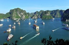 Free tours offered to int'l press to promote tourism
