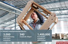 Vietnam becomes largest furniture exporter to US
