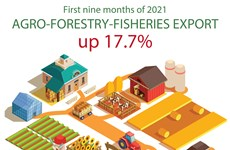 Agro-forestry-fisheries export value up 17.7 percent