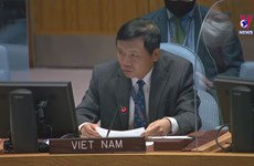 Vietnam voices support for peace, reconciliation process in Colombia