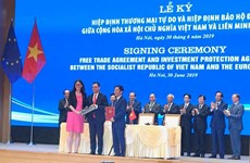 EVFTA propels forward Vietnam-EU economic development