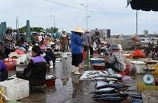 Dong Hoi fish market - a must-go destination when visiting Quang Binh
