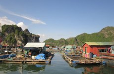Cai Beo - The largest floating village in Vietnam in ancient time