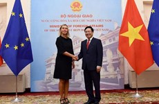 Deputy PM Pham Binh Minh holds talks with EC Vice-President