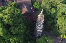 Pho Minh Pagoda: Persisting for 7 centuries