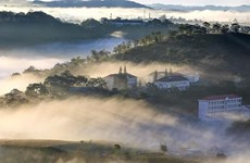Visiting Da Lat, the beautiful city in the mist