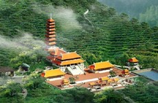 Dai Tue: The famous pagoda holding numerous national records