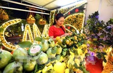 Diversified activities at fruit fair in Luc Ngan district