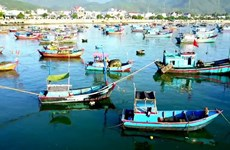 Vinh Luong - The focal port of South Central Vietnam
