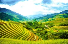 Mu Cang Chai - One of the best travel destinations of 2020