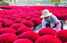 A visit to Quang Phu Cau traditional incense-making village