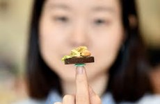 Meet a Vietnamese girl with a passion for miniature food models