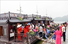Domestic tourism becomes rising trend in Vietnam