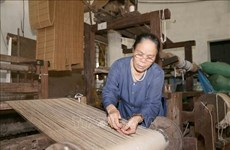 Making silk from lotus: a specialty of a Vietnamese craftsman
