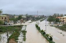 Quang Ngai province battered by Typhoon Molave