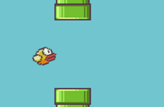 Flappy bird: A role model for the next programmers in Vietnam